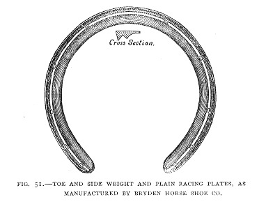 Toe Side Weight Horse Shoe Fig 51